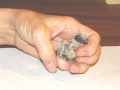 Baby_Mourning_Dove